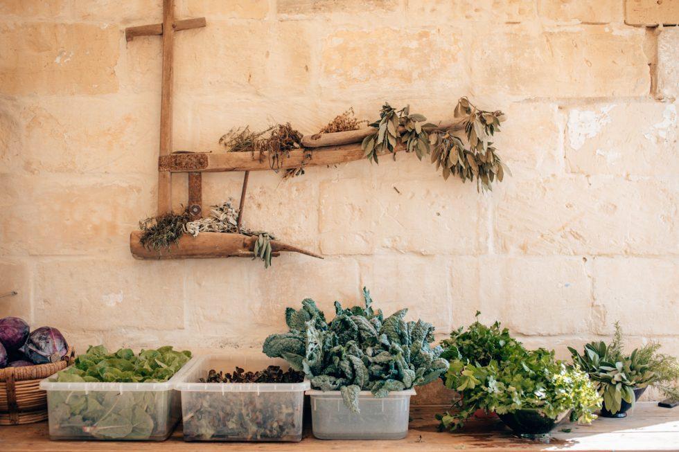 malta-travel-sustainable-farm-lifestyle-photographer-laura-g-diaz-5