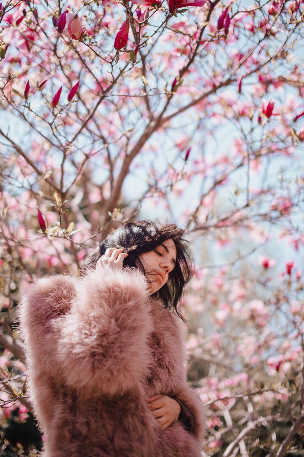 cherry-blossom-botanical-garden-jardin-botanique-montreal-lifestyle-photographer-laura-g-diaz-1