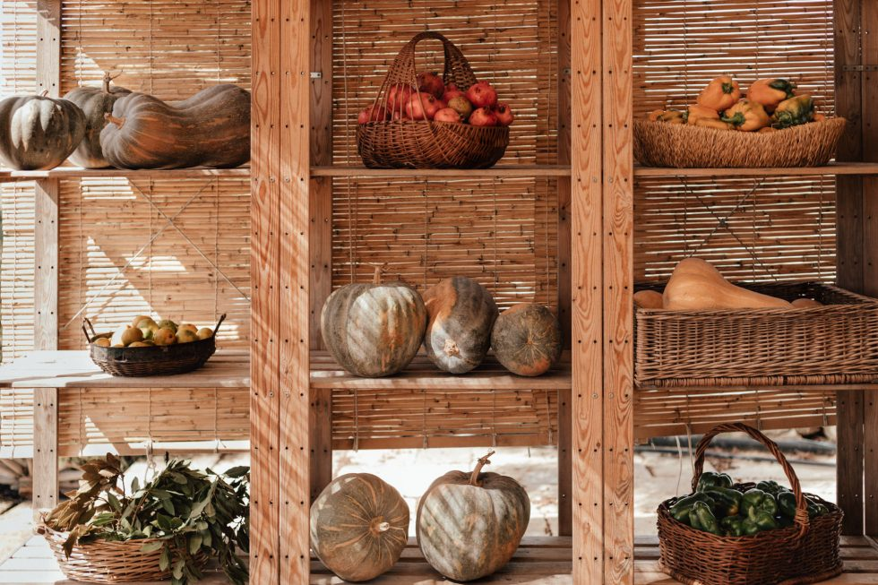 malta-travel-sustainable-farm-lifestyle-photographer-laura-g-diaz-4